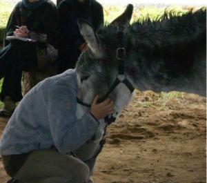 médiation animale : travail avec IME, SESSAD, IMPRO, foyer de vie. Prise en charge autisme.
